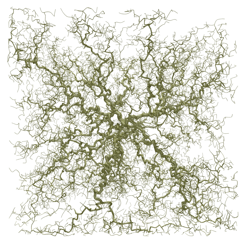DLA - Diffusion Limited Aggregation